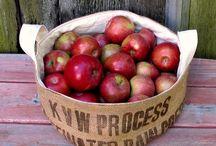 Mela - Apple / Il frutto per eccellenza