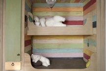 Girl's Room / Built in Bunk Beds / by Reagan Ulsaker Mashaney