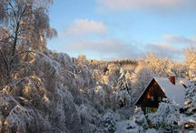 winter landscapes / The most beautiful winter landscapes