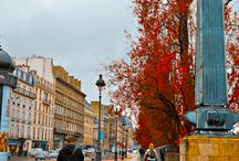 Autumn in Paris / Autumn leaves painting the city of Paris with beautiful and rich Fall colors.