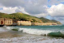L'Ex Stabilimento Florio delle tonnare di Favignana e Formica / Il più importante stabilimento industriale per la lavorazione del tonno del mediterraneo