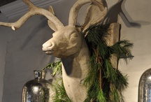 Holiday Decorating & Display