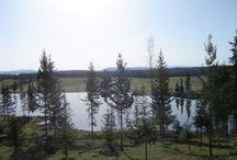 Williams Lake, B.C. #williamslake