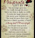 I Heart Paws