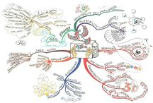Emily Burton / Mind maps created by Emily Burton. / by IQ Matrix