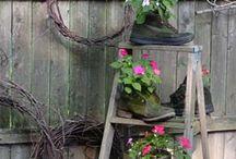 Gardening / by Bev Uttech