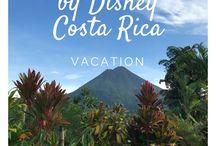 Travel Blogger Provider Reviews