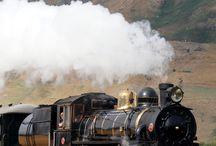 TRAINS / Tren Zug Treno