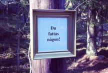 Art in the forest / Frames, signs, text, compliments, forest, pep talk, street art