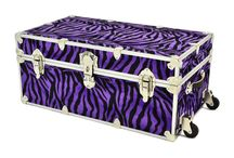 Rhino Zebra Trunks / A collection of one of Rhino's newer lines of trunks, the Zebra