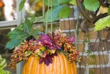 Fall Decorating / by Luci Lawson Jameson