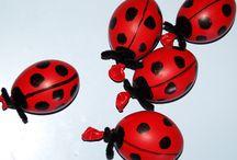 Lady bug unit / by Nikki Rosenzweig Hinkle