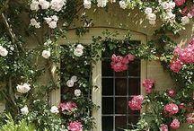 Romantisches Haus mit Blumen