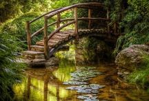 bridge to my house in the woods