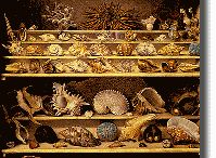 Cabinets de curiosités / Ce sont les ancètres des museum d'histoire naturelle, collections diverses rassemblées, juxtaposition d'objets source d'émotion