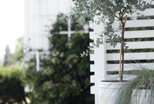 terraces ideas/garden