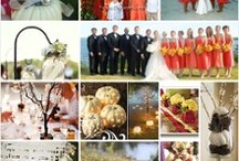 WEDDING COLORS & THEME / by SCOTT and TRICIA October 5, 2013