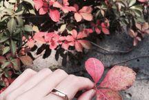 BYGAMI Instagram / 바이가미, 커플링, 반지, 결혼반지, 웨딩밴드, 커플반지, 커플링브랜드, 프로포즈반지, 결혼예물, 예물커플링, 명품커플링, 예물, 백금커플링, 청담예물, 예물반지, 이니셜반지, 웨딩커플링, 청담동예물, 청담예물샵, 쥬얼리브랜드, 웨딩반지, 결혼예물반지, 결혼반지커플링, 청담동예물샵, 청담커플링, 웨딩링, 결혼커플링, 주얼리브랜드, 결혼예물커플링, 백금반지