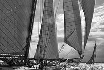 Sail Away / by Jeff Fitzsimmons