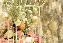 Birdcage floristry ideas / Ideas on how to fill the birdcages