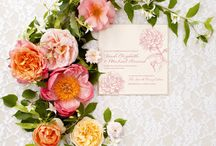 I Heart Stationery / by Petronella Lugemwa of Petronella Photography