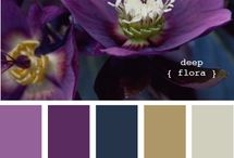 Color swatches / color swatches for inspirational purposes, great color choices for digital design projects