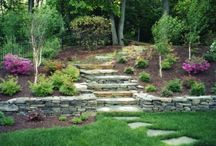 Backyard Ideas / by Catherine Anderson