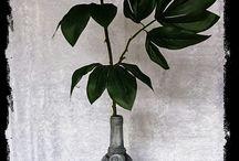 Flaschen im antiken Stiel. Zu finden in meinem Onlineshop unter www.creationsgiselle.com