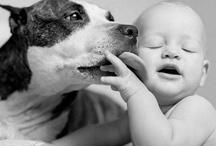 Dog ♥