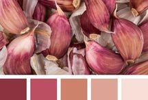 paleta de colores 2