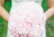 Wedding Flowers / by Vicki Lavin