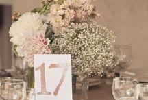 Weddding planner  / weddings