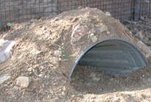 tortoise habitats