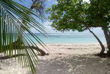 Plage Guadeloupe