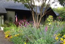 Heather's Garden (Eugene)