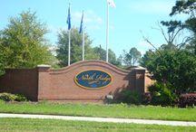 Deland, Fl-North Ridge Community