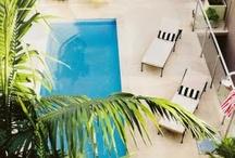 beautiful pool area's