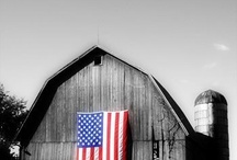Flag day & 4th of July / by Michelle Herrin