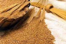 Alimentos con almidón | Starchy foods / Si tienes una espondiloartropatía y sigues una dieta baja / sin almidón, aquí encontrarás una colección de alimentos que conviene evitar. -- EN CONSTRUCCIÓN -- Las cantidades indican el contenido de almidón por cada 100 g de alimento.