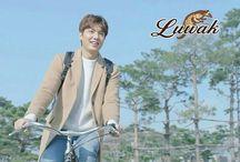Lee Min Ho Luwak white koffie