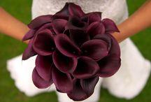 wedding ideas / by Maylin Chavez