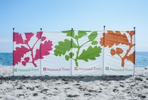 Case Studies of our Client's Windbreaks