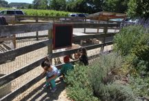 Wine Country Family Travel Tips
