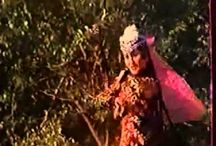 Silkroad Dances / Dances from Uzbekistan, Tajikistan, Iran, etc.