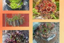 Vintage Gardens / From Vintage Unscripted