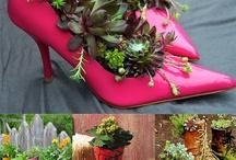 Plants for wedding