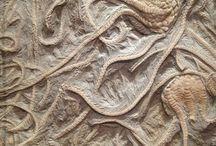 fossils/dinosaur stuffs