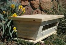 GARDEN | Bees / Information and resources and owning and caring for bees | growing food | pollenators | pollen attractors | bee hives | bee equipment | urban gardening | permaculture practices