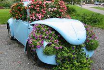 Vw garden ideas