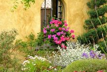 Garden Spaces and Ideas
